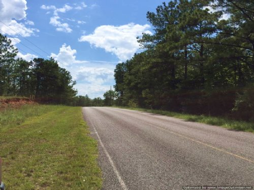18± Acres : Waynesboro : Wayne County : Mississippi