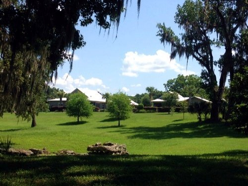 Wacahoota Ranch - 126 Acres : Micanopy : Alachua County : Florida
