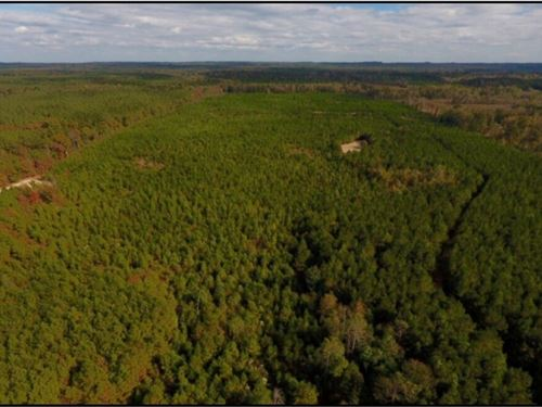 200 Acres In Lauderdale County : Meridian : Lauderdale County : Mississippi