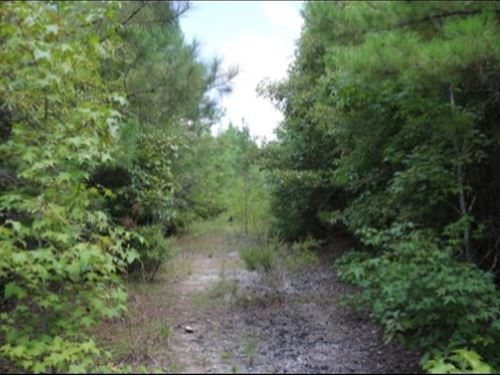 63 Acres In Lauderdale County : Meridian : Lauderdale County : Mississippi