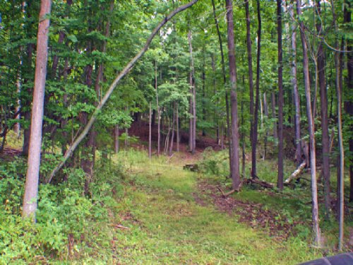 15 Acres Border Dansville Reservoir : Dansville : Livingston County : New York