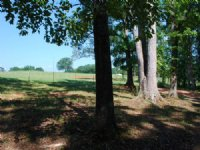 5.4 Acre Mini Farm In Spartanburg : Pacolet : Spartanburg County : South Carolina