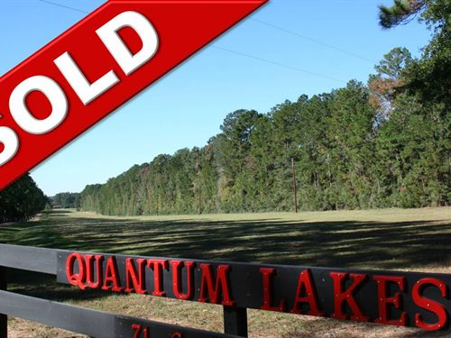 Quantum Lakes : Cleveland : San Jacinto County : Texas