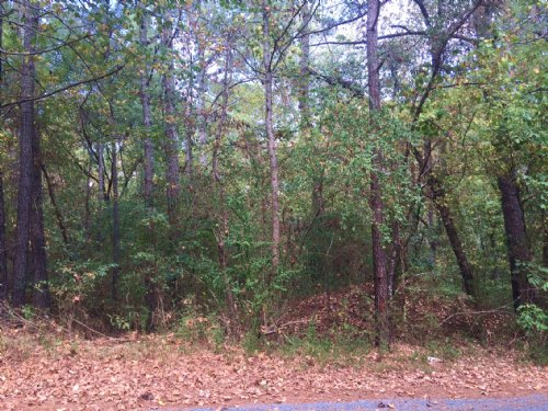 9.42 +/- Wooded Acres, Ranger : Ranger : Gordon County : Georgia