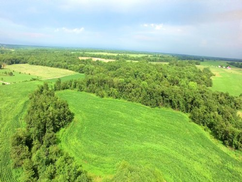 79 Acres; Hwy 151 : Madison : Monroe County : Missouri