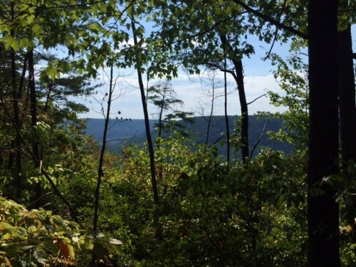 30.5+/-acres With Waterfalls : Tracy City : Grundy County : Tennessee