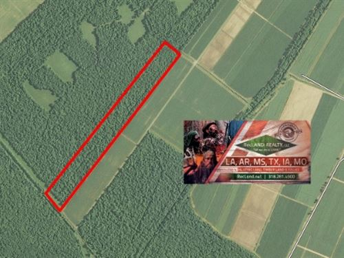 40 Ac - Hunting Tract Near False Ri : New Roads : Pointe Coupee Parish : Louisiana