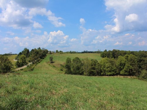 Rainbow Lake Rd - 84 Acres : Athens County : Ohio