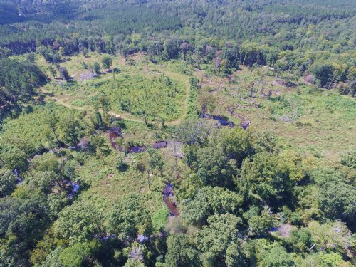 120 Acres And Camp : Grayson : Caldwell Parish : Louisiana