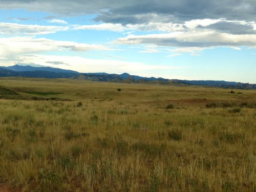 Roaming Antelope Ranch : Livermore : Larimer County : Colorado