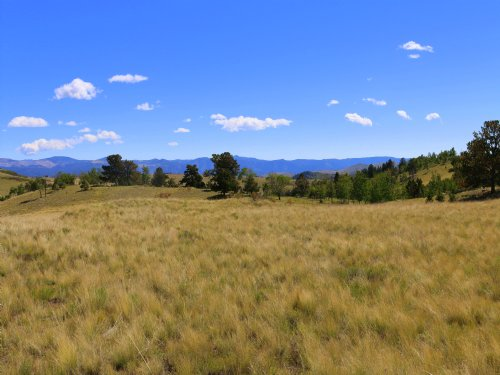 Wapiti Meadows : Canon City : Fremont County : Colorado