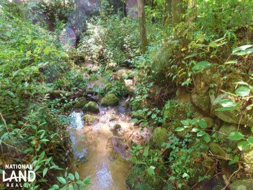 Mountain Recreation Property : Marietta : Greenville County : South Carolina