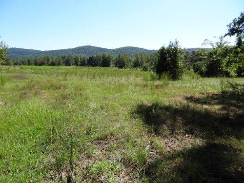 80 Ml Acres Near Hot Springs : Ozark Lithia : Garland County : Arkansas