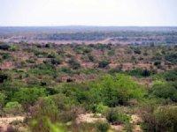 Seminole  67 : Comstock : Val Verde County : Texas