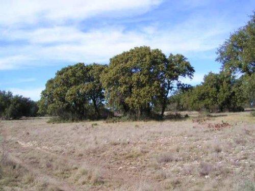 85 Acres Eden, Cr & Electric : Eden : Concho County : Texas