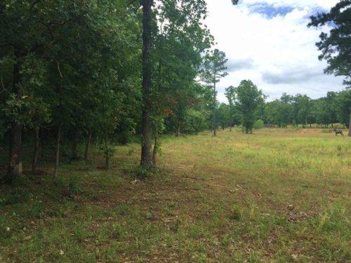 44.77 M/L Acres : Locust Grove : Cherokee County : Oklahoma