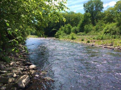 10 Acres Near Salmon River : Altmar : Oswego County : New York