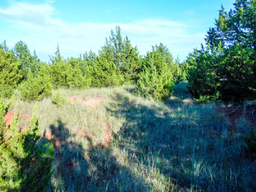 40 Acres Of Hunting/pond : Stillwater : Payne County : Oklahoma