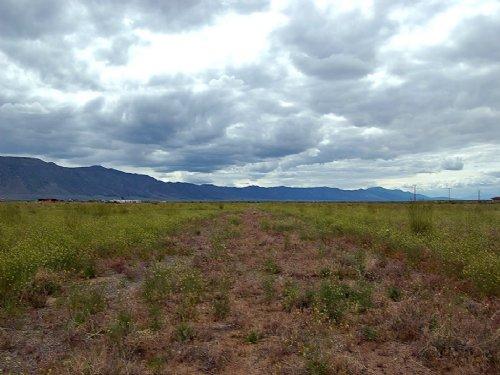 0.82 Acre Lot Near Reno : Herlong : Lassen County : California