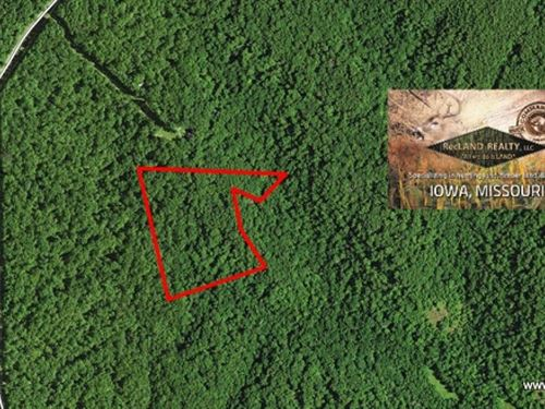10 Ac - Wooded Tract In Ozark Hills : Laurie : Morgan County : Missouri