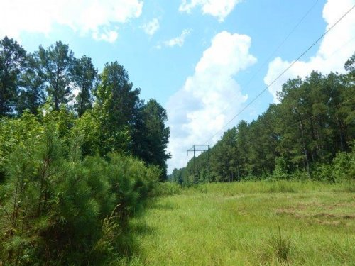 Home And 106 Acres In Walthall Coun : Tylertown : Walthall County : Mississippi