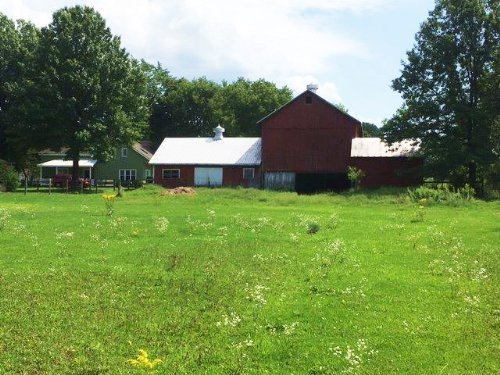 124 Acre Farm Tillable Land In Rome : Rome : Oneida County : New York