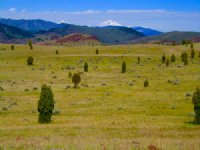 Red Rock Hunting Ranch : Ramsay : Silver Bow County : Montana