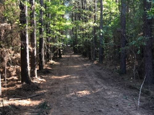 67 Acres Branch Road Amite County : Smithdale : Amite County : Mississippi