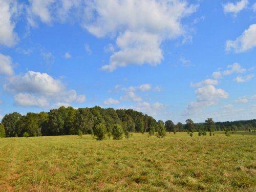 Reduced 45 Acre Farm : Gaffney : Cherokee County : South Carolina