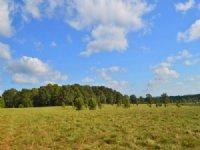 Reduced 45 Acre Farm : Gaffney : Cherokee County : South Carolina