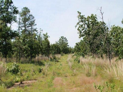 9 Acres Indian Ridge Ii. Terms $225 : Alderson : Pittsburg County : Oklahoma