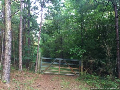 244+/- Ac Hunting Tract : Noxapater : Winston County : Mississippi