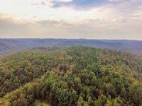 1068 Acres At Wild Cherry : Pineville : Izard County : Arkansas
