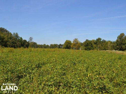 85 Acre Row Crop And Recreational P : Moro : Lee County : Arkansas