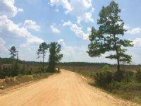 Knox Tract : Gray : Jones County : Georgia