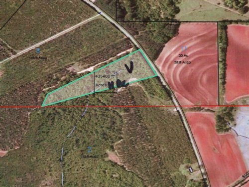 11 Ac With Natural Hardwoods : Banks : Pike County : Alabama
