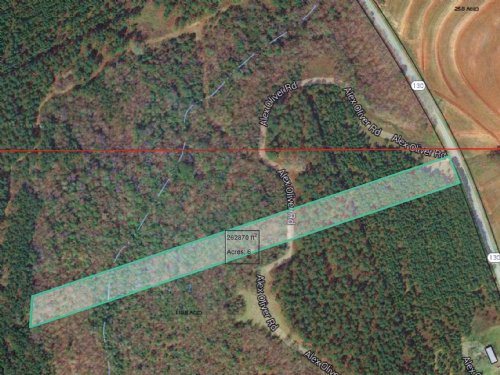 6 Acres With Plenty Of Wildlife : Banks : Pike County : Alabama