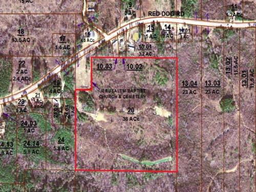 38± Acres : Carthage : Leake County : Mississippi