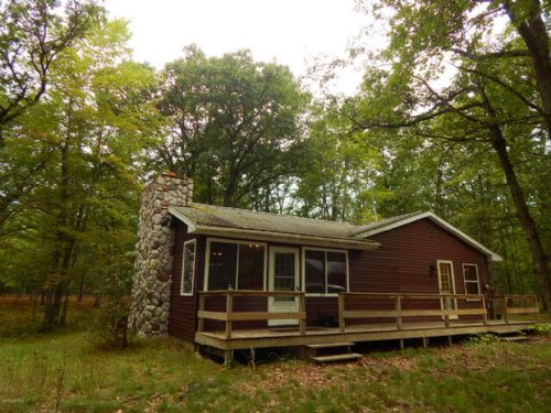 Comfortable Cabin On 50 Acres : Mesick : Wexford County : Michigan