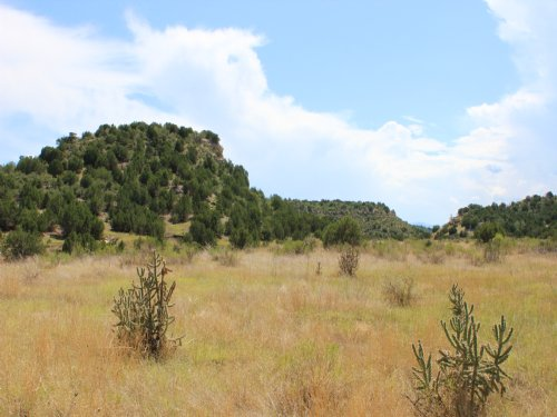 250 Acres Spectacular Views : Pueblo : Colorado