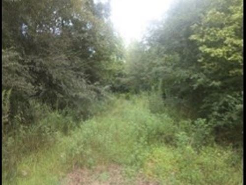 43 Acres In Holmes County : Lexington : Holmes County : Mississippi