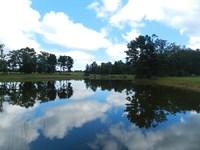 Lake Country Horse Farm : Eatonton : Putnam County : Georgia
