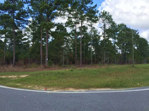 4.53 Acres On Huntington Ridge Dr : Fitzgerald : Ben Hill County : Georgia
