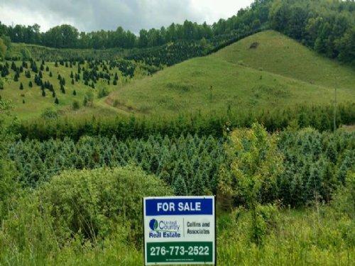 Acreage & Christmas Tree Farm : Mouth Of Wilson : Grayson County : Virginia