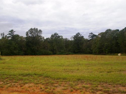 5.33 Acre Home Site, Pike County, : Summit : Pike County : Mississippi