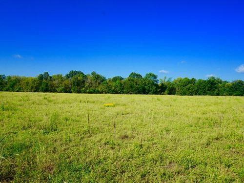 Cattle/Duck Hunting Property Little : Ashdown : Little River County : Arkansas