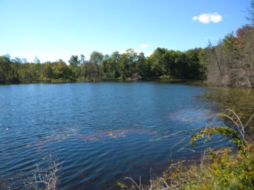 Building Lot Near Ithaca Large Pond : Richford : Tioga County : New York