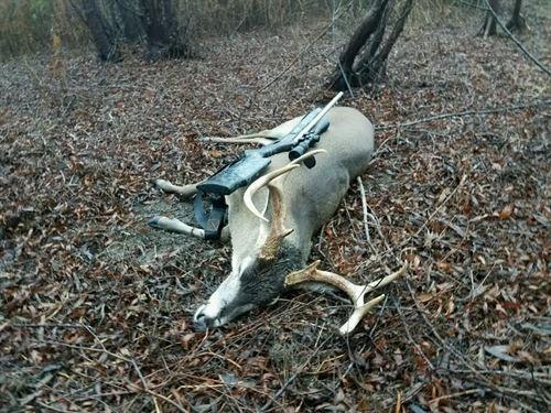 Duck & Deer Hunting Property : Lake Providence : Tensas Parish : Louisiana