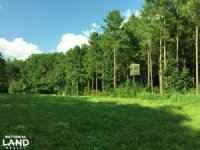 Fort Deposit Hunting And Timber Inv : Fort Deposit : Lowndes County : Alabama