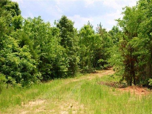 8.08 Acres Bluebird Ranch : Huntingdon : Carroll County : Tennessee